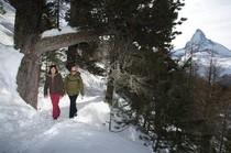 Best ski resorts for non skiers - Zermatt, Switzerland