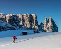 Alpe di Siusi (Seiser Alm), Italy